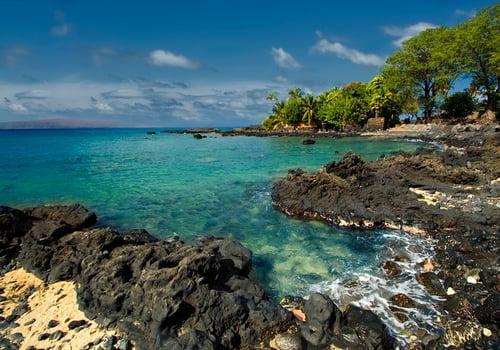 https://images.hawaiianplanner.com/activity/ahihi-kinau-1420-1.jpg