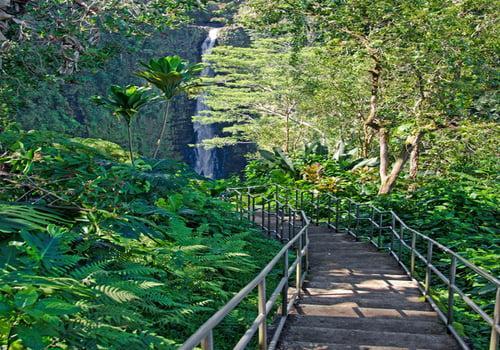 Akaka Falls Trail