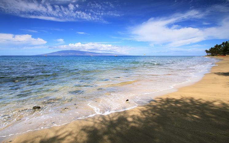 D.T. Fleming Beach