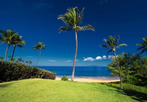 Ulua Beach