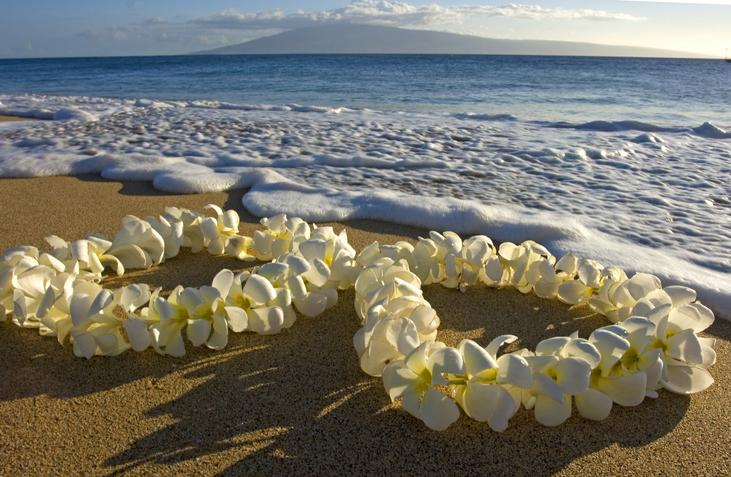 Lei by the sea
