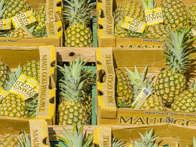 Maui Gold Pineapple Factory