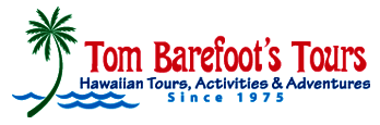 Tom Barefoot
